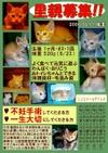 Satooya_poster05